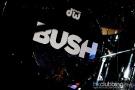 Evanescence_bush_20