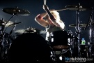 Evanescence_bush_30